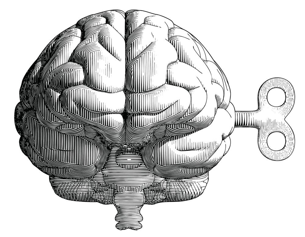 Illustrazione incisione vettoriale metaforica di cervello con chiave di carica utilizzata sul sito Willbe nella home page