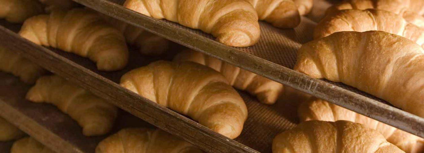 Willbe foto stabilimento croissant VerdeBio